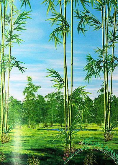 Rèm cuốn tranh HT Bình Dương- Mang cả thiên nhiên vào ngôi nhà của bạn